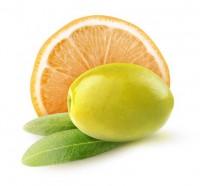 ARISTEON Olivenöl 'EV Orange'
